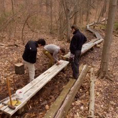 WahMAINT-Boardwalk Repair